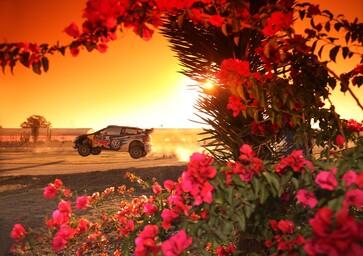 WRC, le foto più belle della stagione 2016